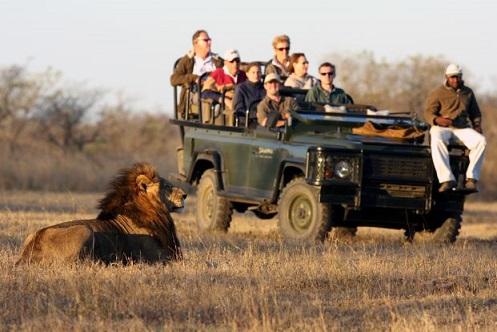 همراه با حافظان حیات وحش در دل آفریقا