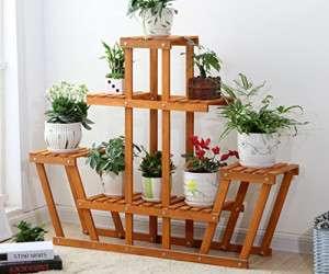 ایدههایی برای چیدمان گیاهان در خانه