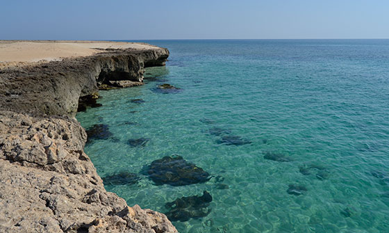 ببینید: دیدنیهای جزیره کیش در یک نگاه