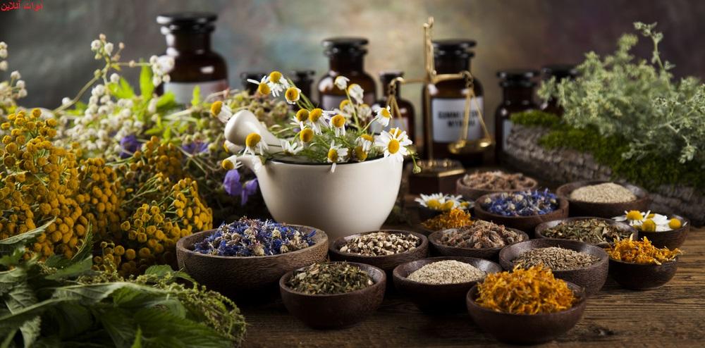 معرفی داروهای گیاهی که چرکخشککن هستند