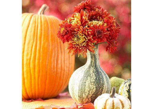 گل ها فقط مخصوص فصل بهار و تابستان نیستند. رنگ های پاییزی را با گل های طبیعی یا مصنوعی به خانه خود بیاورید.