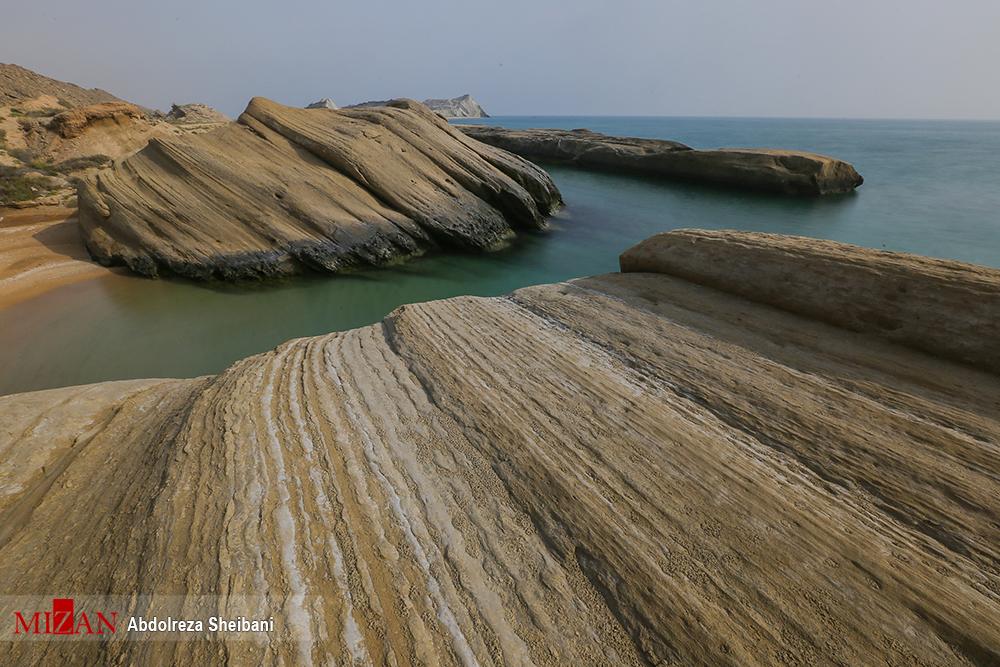 تصاویر حیرت انگیز از کلوتهای ساحلی خلیج فارس