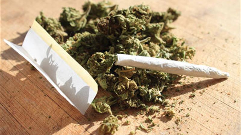 گزارشی تكاندهنده از مضرات و عوارض مصرف ماده مخدر گل