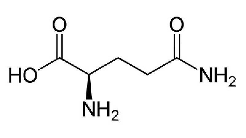 ترکیبات گلوتامین چیست