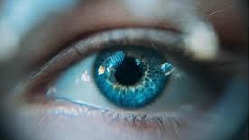 سلامت چشمان خود را آب هویج بهبود ببخشید