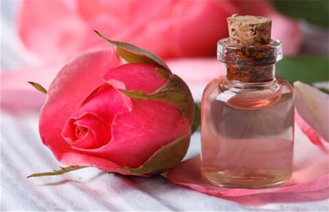 گلاب در پیشگیری از کرونا بی اثر است