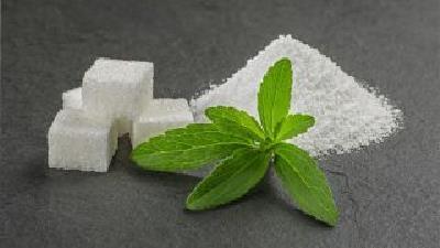گیاه استویا را می توانید به جای شکر استفاده کنید