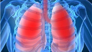 تفاوت ریه یک سیگاری و یک فرد عادی را تماشا کنید