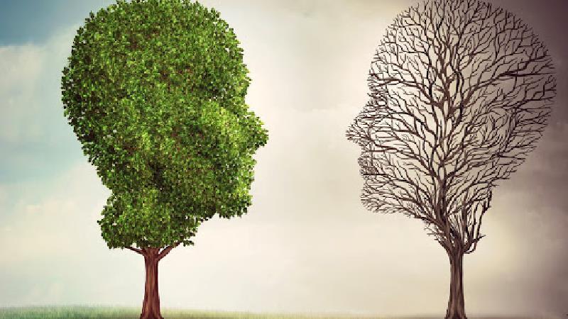 سلامت روان فرد به عملکرد او در جامعه بستگی دارد
