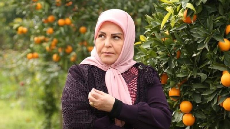 اکرم محمدی در سریال های ماندگاری بازی کرده است