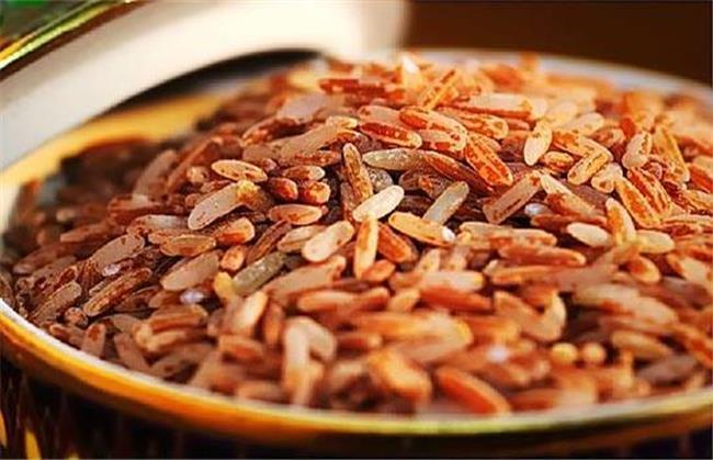 برای تامین امگا ۳ برنج قهوه ای بخورید
