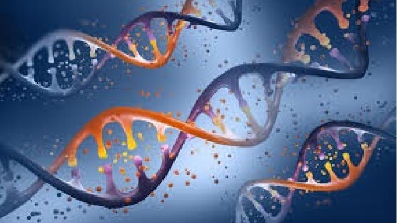ژن درمانی چگونه است