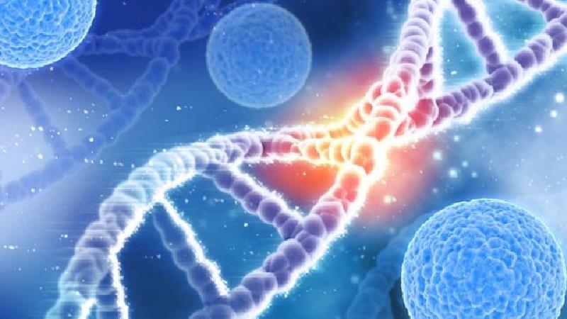 از ژن درمانی در چه واردی استفاده می شود