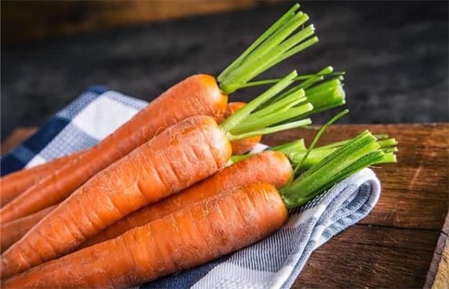 هویج برای زخم معده مفید است
