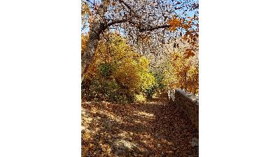 روستای برگ جهان ؛مقصد مناسب برای سفر یک روزه به اطراف تهران