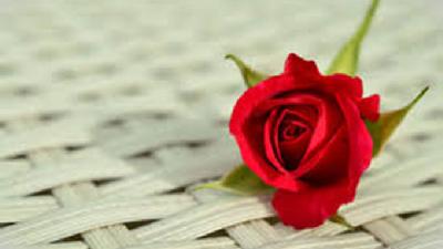 ایدههایی جذاب  و آسان برای برگزاری جشن سالگرد ازدواج