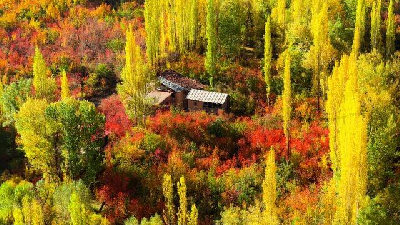 در پاییز به بلده سفر کنید