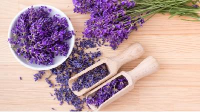 با خاصیتهای اسطوخودوس در طب سنتی آشنا شوید