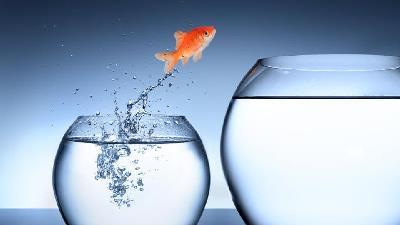 رازهای موفقیت؛ 9 سوالی که به تغییر در زندگی شما کمک میکنند