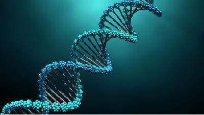 دلیل چپ دست شدن چیست؛ نقش ژنها، دی.ان.ای