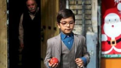 یونا تدین در فصل اول سریال بچه مهندس در نقش جواد جوادی