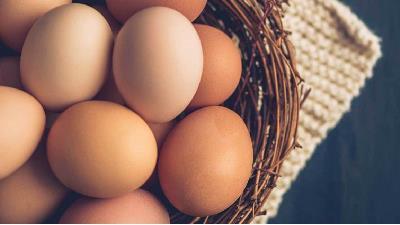 تخم مرغ پروتیین مورد نیازتان را تامین می کند