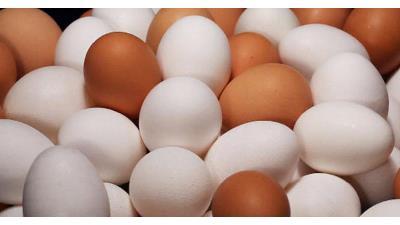 تخم مرغ چه تاثیری در رشد مو دارد