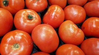 گوجه فرنگی باعث چربی سوزی می شود