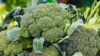 کلم بروکلی از سبزیجات حاوی اسید فولیک است