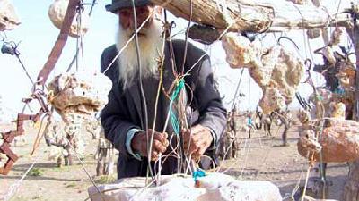با باغ سنگی درویش خان آشنا شوید