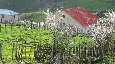 روستای شامیلرزان چه دیدنی هایی دارد