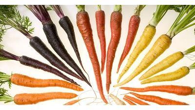 هویج به مادران شیرده توصیه می شود