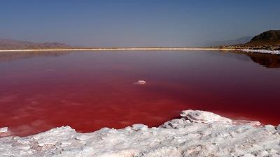 دلیل صورتی رنگ بودن دریاچه مهارلو چیست