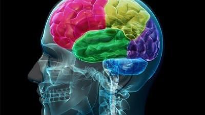 خشکی مغز با چه نشانه هایی خود را نشان می دهد