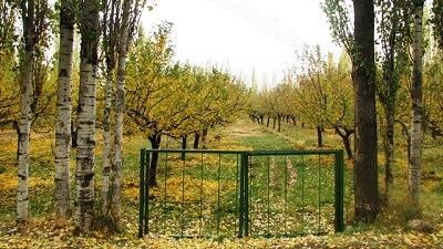 روستای سوکهریز کجا است
