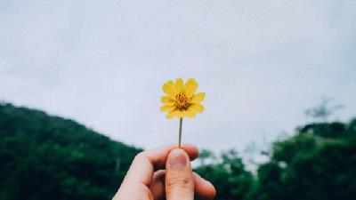 خوشبختی چه نشانه ها و وویژگی هایی دارد