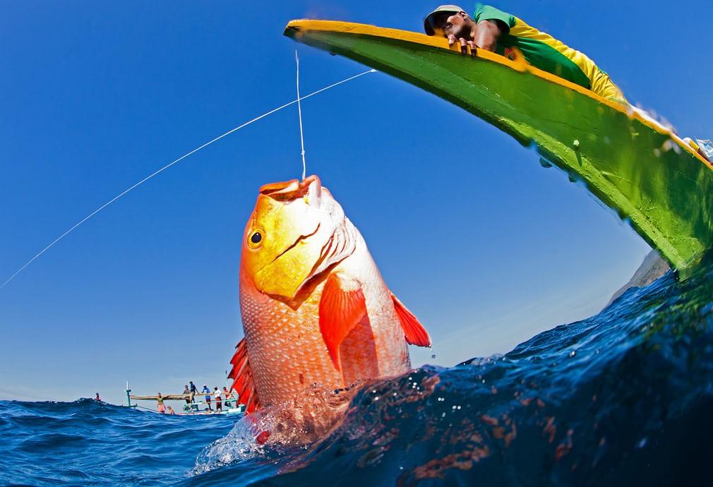 ماهیگیری با مقررات در آسیای جنوب شرقی