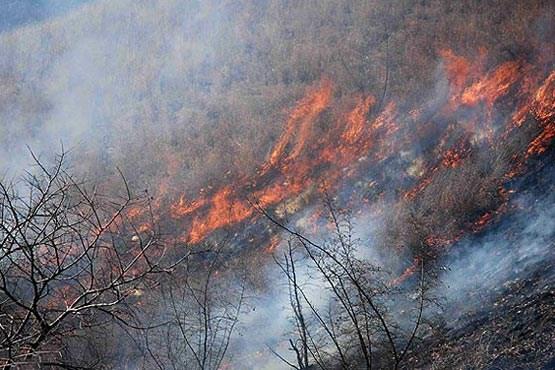 سهلانگاری گردشگران 50 هکتار از جنگلهای میانکاله را طعمه آتش کرد