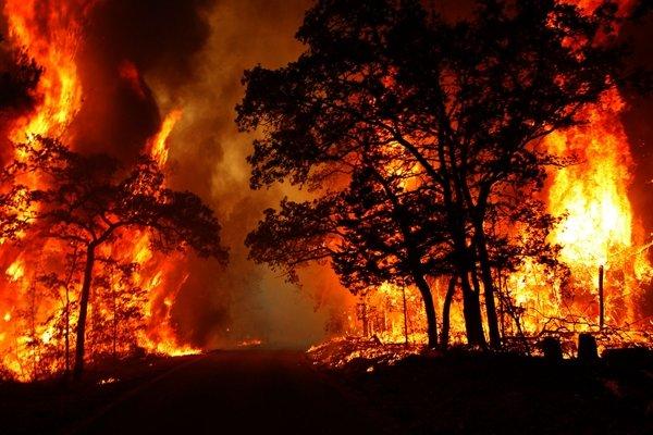 آتش بیش از ۲۰۰ هکتار  از میانکاله را بلعید