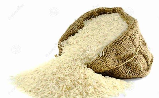 واردات برنج درفصل برداشت ممنوع