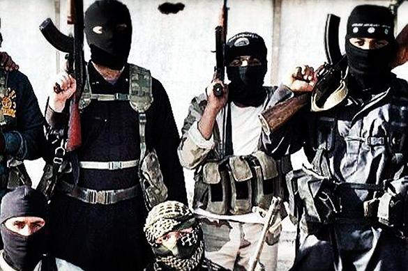تارنمای روسی: سه هزار تروریست در راه اروپا هستند