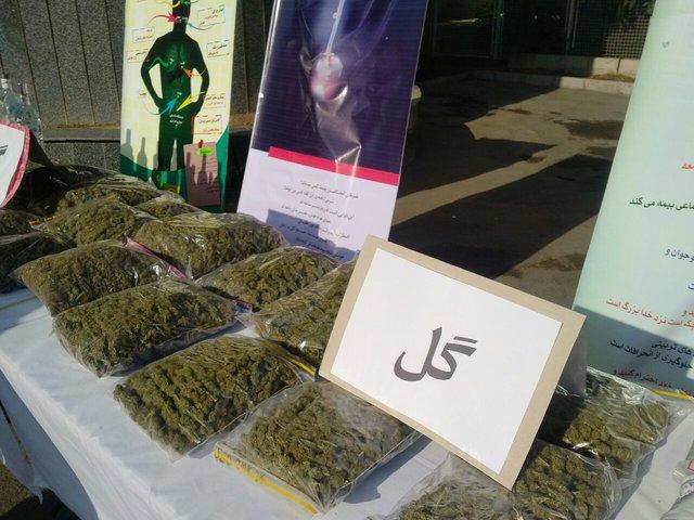 قیمت «گل» دومین مخدر مصرفی در کشور اعلام شد