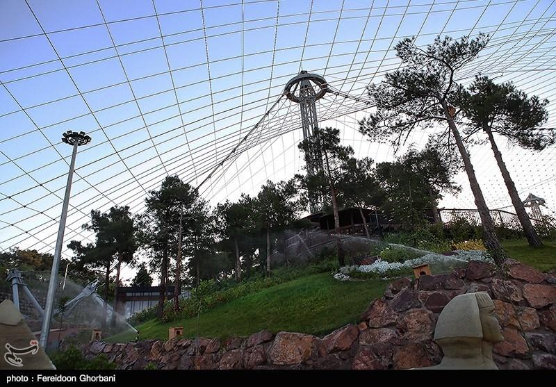 نگرانی مسئولان محیط زیست از افتتاح فاز دوم باغ پرندگان