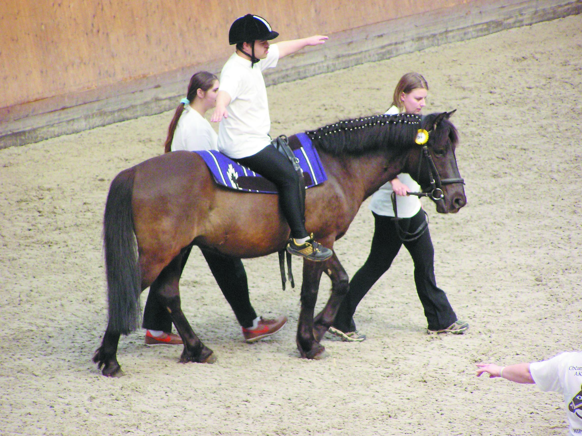 حیوانات در خدمت کودکان معلول