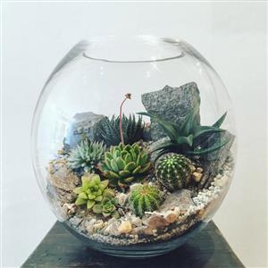 خانهتان را با باغ شیشهای زیبا کنید