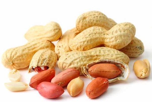 خوراکیهایی برای بهبود فشارخون و کاهش کلسترول