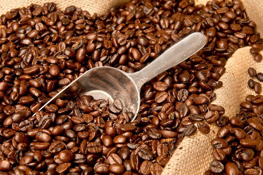 چگونه قهوه مناسب بخریم؟