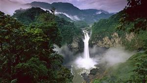 عکسهای خیرهکننده از جنگل آمازون
