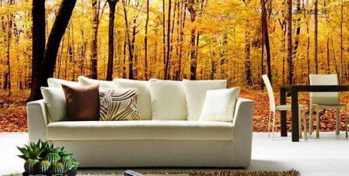 چگونه دکوراسیون خانهمان را پاییزی کنیم؟