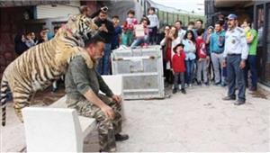گزارشی متفاوت از دهکده حیوانات در قزوین + عکسها